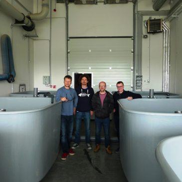 Jūros tyrimų instituto mokslininkai bendradarbiaus su Klaipėdos mokslo ir technologijų parku bei Alfredo Vėgnerio institutu augindami krevetes uždaroje akvakultūros sistemoje
